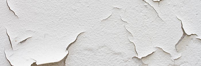 vochtige muren Zwijndrecht